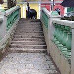 Escada da rua das flores
