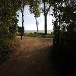 Point Pelee National Park Foto