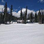 Foto de Sun Peaks Ski Area