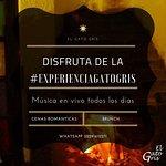 Vive con nosotros la #experienciagatogris