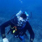 Openwater Padi Dive 3