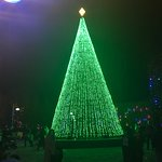 "The main lighted Christmas ""tree"""