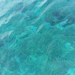 Il mare nella laguna blu