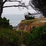 Ocean view from trail.