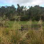 Logan Botanic Garden ภาพถ่าย
