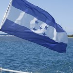 The flag of Honduras from the cat!