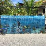 Photo of Utila Water Sports