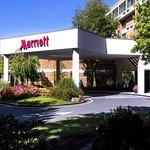 Trumbull Marriott Shelton
