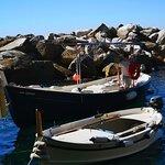 Enjoy Cinqueterre Boat Tours Foto