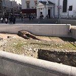 Photo of Good Vienna Tours