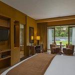 Guest room (350150550)