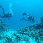 Photo of Cinderella Diving Center El Gouna