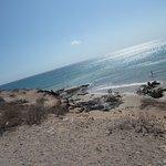 Bild från Playa Esmeralda