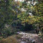 ภาพถ่ายของ Jumbles Country Park