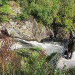 Billede af Falls of Shin