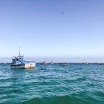 Foto de Pacifico Adventures