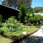 Фотография il giardino di bacco