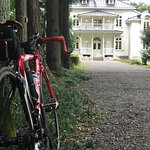杉並木と青木邸
