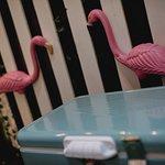 Operation Flamingo
