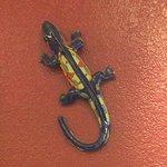 Wall Decor, Green Gecko