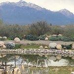 صورة فوتوغرافية لـ Gimenez Riili Winery & Vineyards
