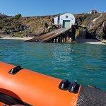 Padstow Sealife Safaris