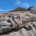 Le rocce intorno