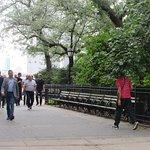 Фотография Brooklyn Heights