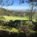 Foto de Tokara Wine Estate