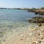 Playa de Son Xoriguer Foto