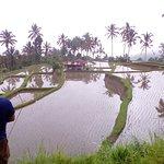 Foto de Warung D'Munduk