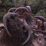 ภาพถ่ายของ Phu Quoc Waterfall