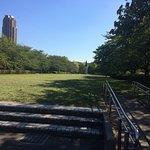Photo of Sarue Onshi Park