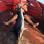 Game Fishing Koh Taoの写真