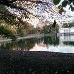 Photo of Patriarch's Pond