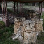 Bilde fra Florissant Fossil Beds National Monument