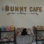 MM's Bunny Cafe
