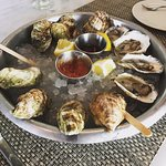Oyster happy hour—place to be!