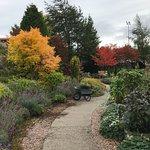 Inverness Botanic Gardens (Outdoor Garden)