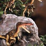 ภาพถ่ายของ Branson Dinosaur Museum