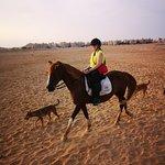 Foto de Horse Riding Hurghada