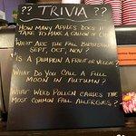 Trivia while you wait
