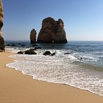 Foto de EZRIDE Ocean Kayak Tours