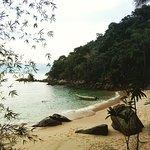 Ilha das Couves Foto