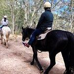 Zdjęcie Sahara Trails Horse Riding and Farm Stays
