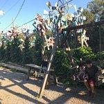 Φωτογραφία: Parque Casa na Arvore