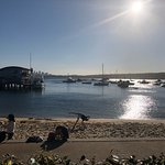 Beach Club at Watsons Bay Boutique Hotelの写真