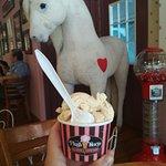 The Plush Horse照片