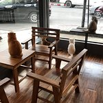 Photo of Cat 'n' A Cup Cat Cafe
