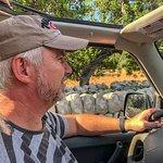 Jeep Safari Mallorca Foto